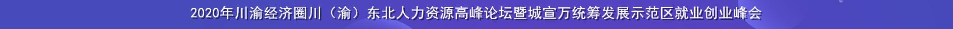 2020年川(渝)东北人力资源高峰论坛暨万达开川渝统筹发展示范区人力资源交流会